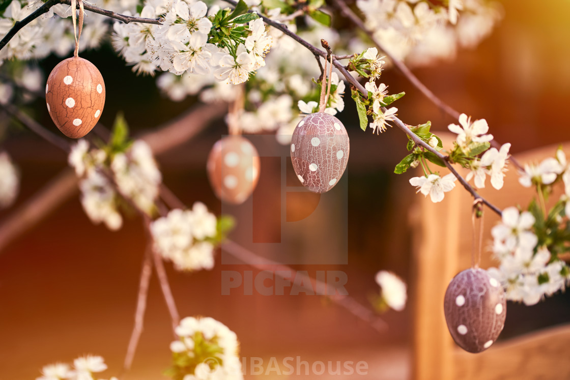 """Easter eggs on bokeh colorful background. Holiday concept"" stock image"