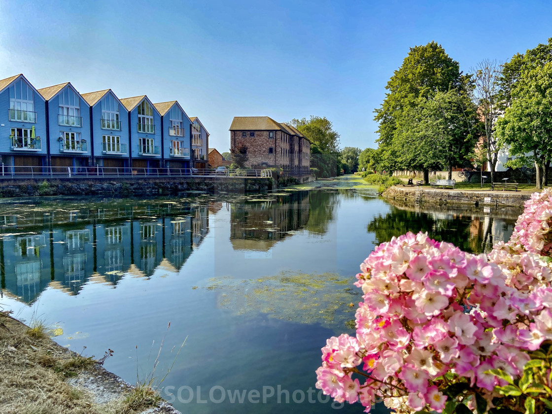 """""""Chichester Canal"""" stock image"""