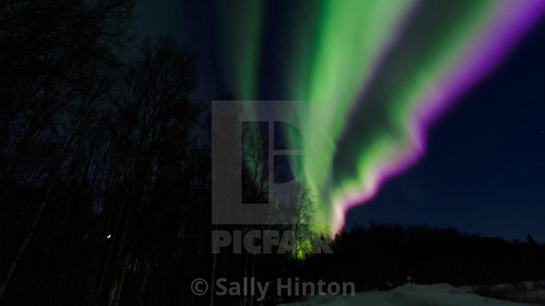 """Fairbanks Aurora"" stock image"