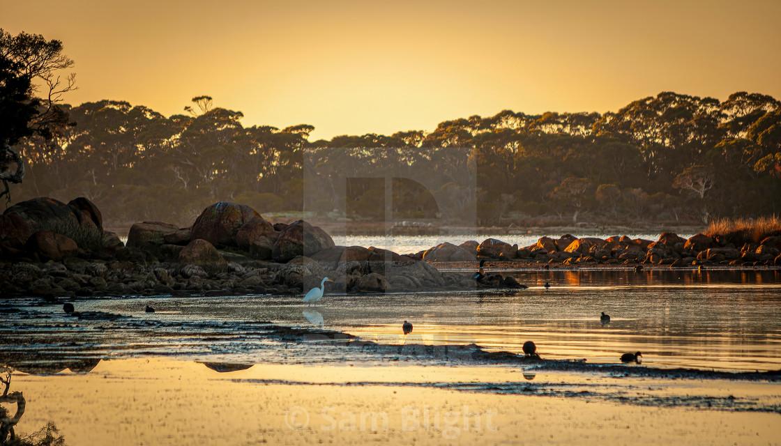 """""""Cove Dawn"""" stock image"""