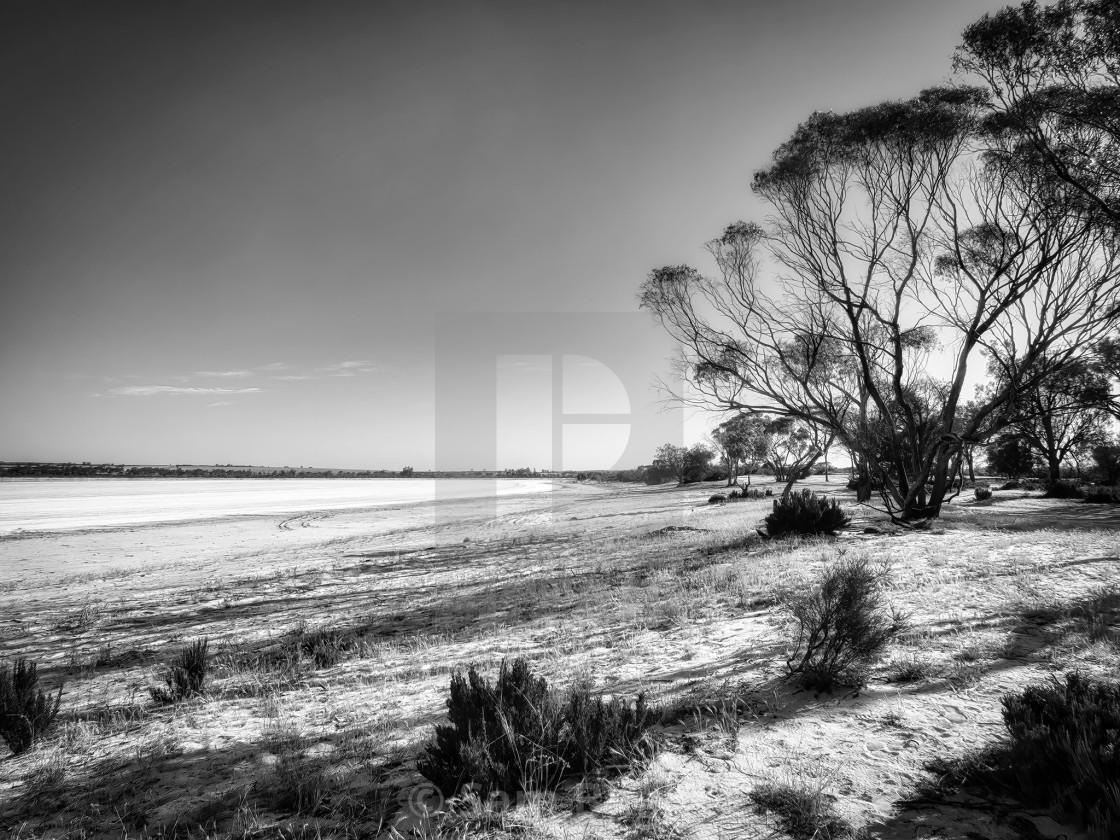 """Wheatbelt Salt Lake Shoreline"" stock image"