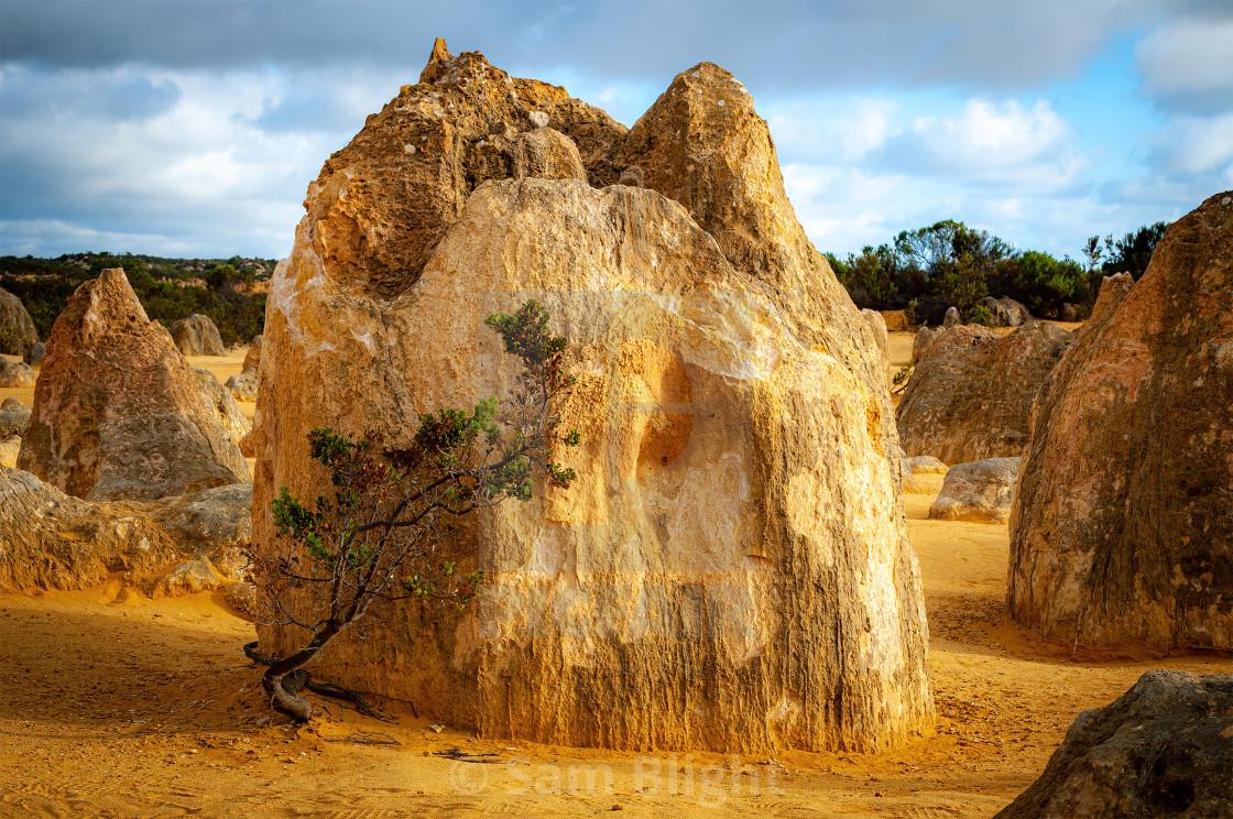 """Pinnacles Formation"" stock image"