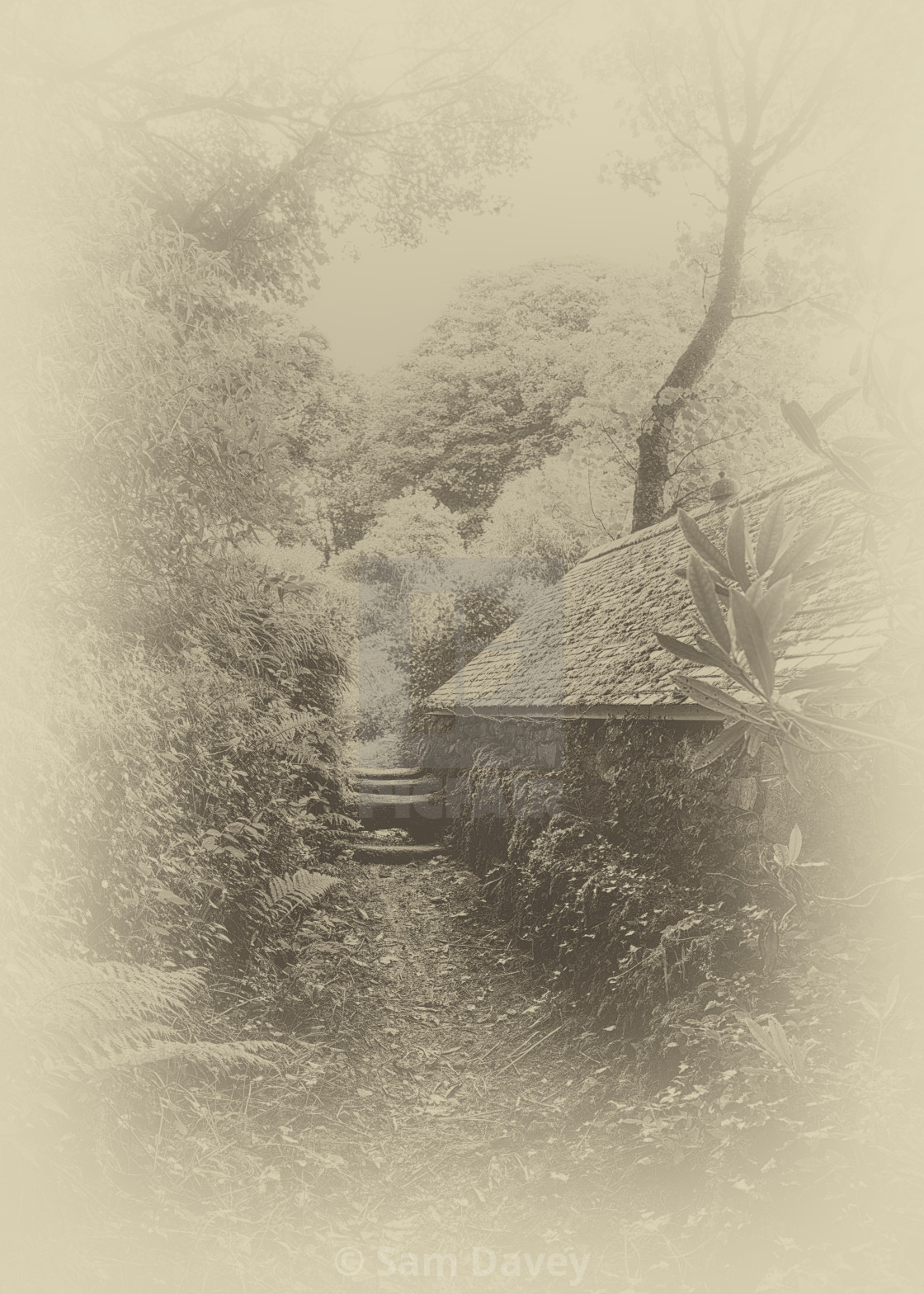 """Hidden Cornwall"" stock image"
