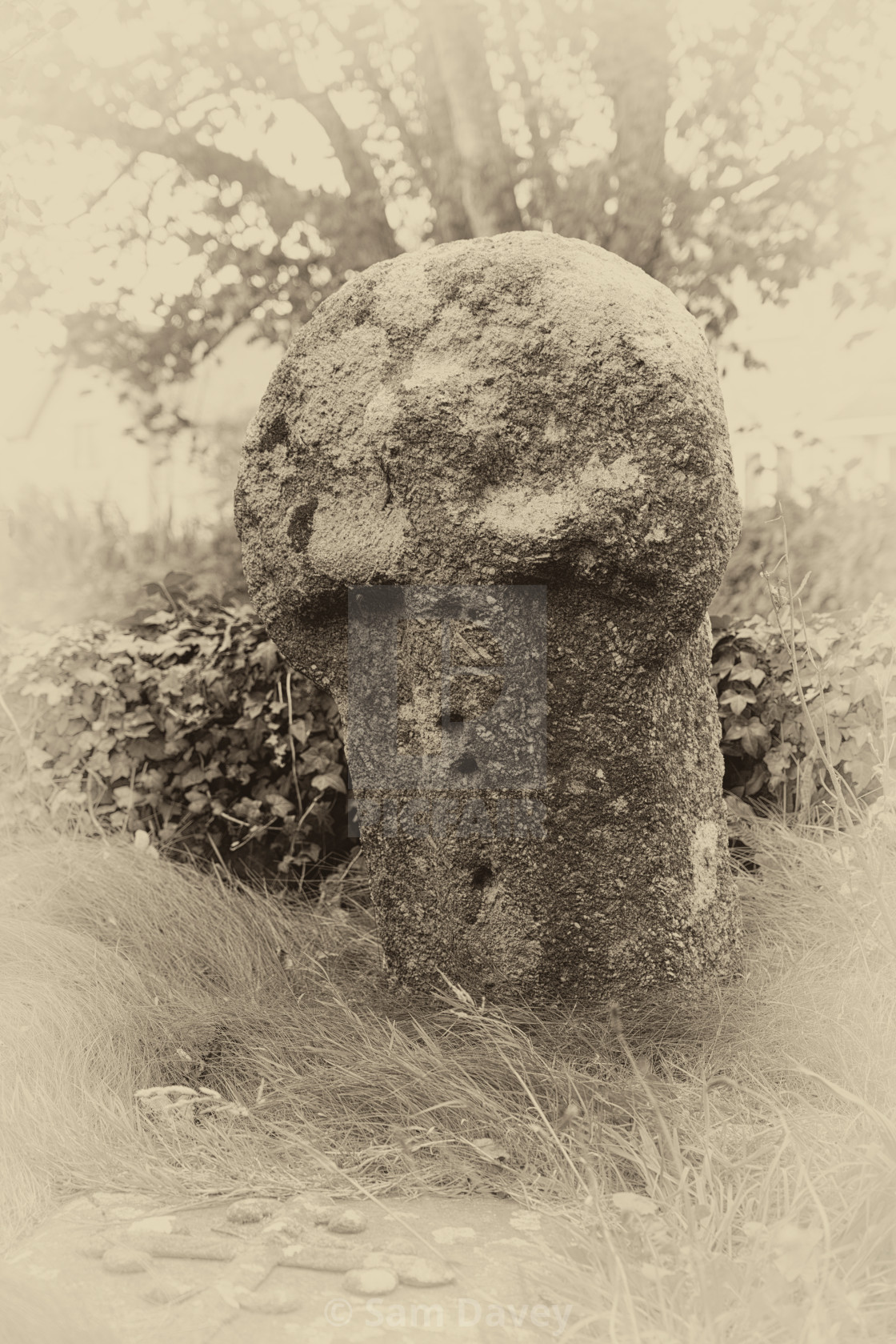 """""""Ancient Cross in Madron Churchyard, West Cornwall"""" stock image"""