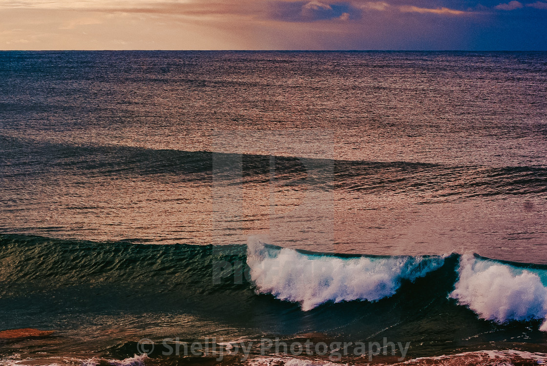 """""""The beach at sunset"""" stock image"""