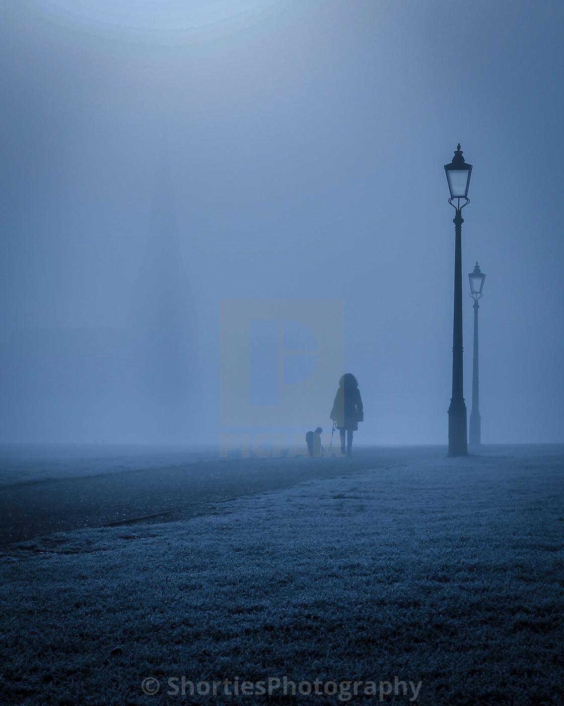 """Foggy Doggy Walkies"" stock image"