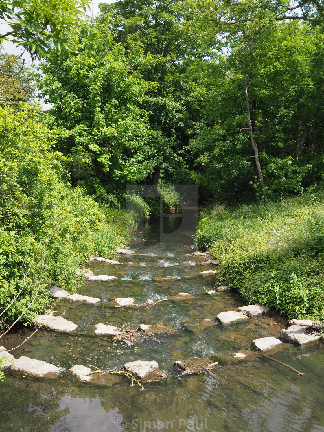 """""""The Hogsmill River"""" stock image"""