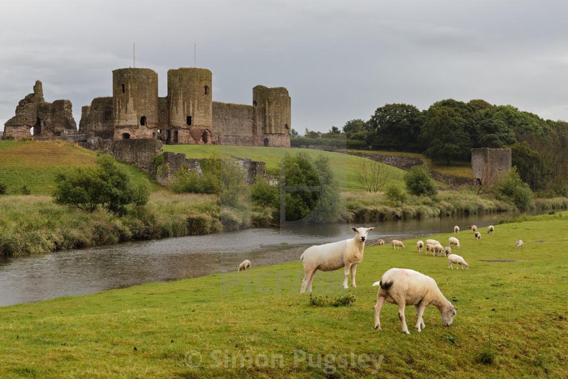 """Rhuddlan Castle"" stock image"