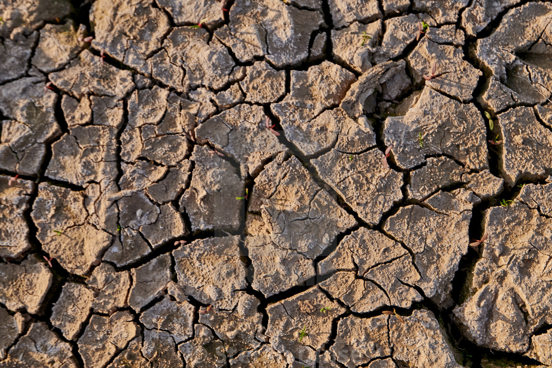 """dry and cracked soil on farming land"" stock image"