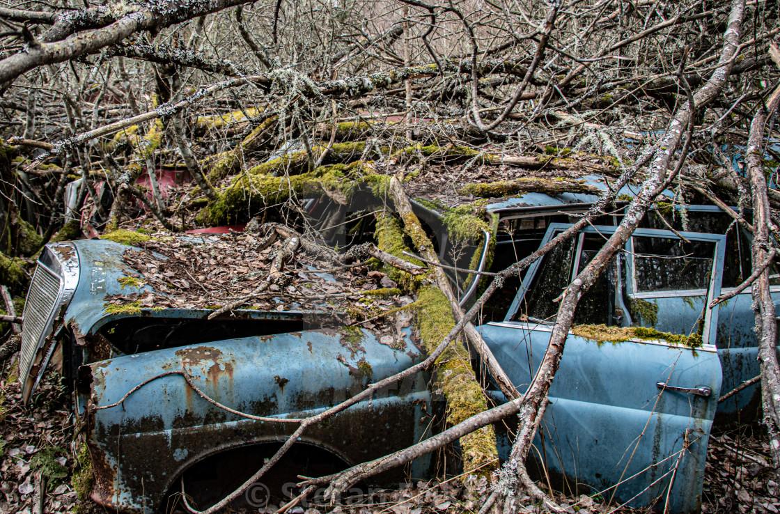 """The Graveyard #9"" stock image"