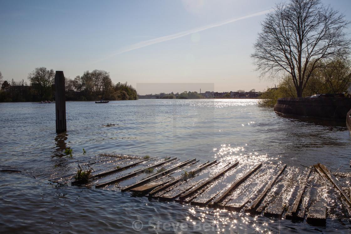 """River Thames near Putney"" stock image"