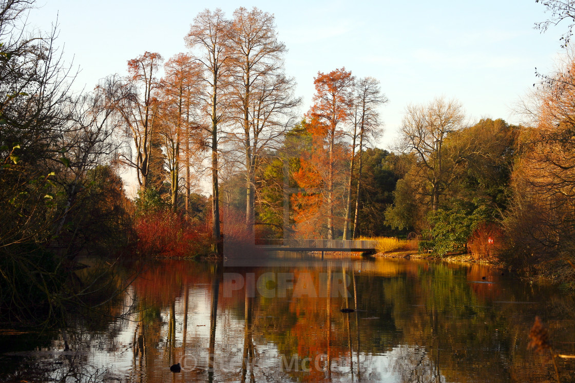 """Kew gardens lake"" stock image"