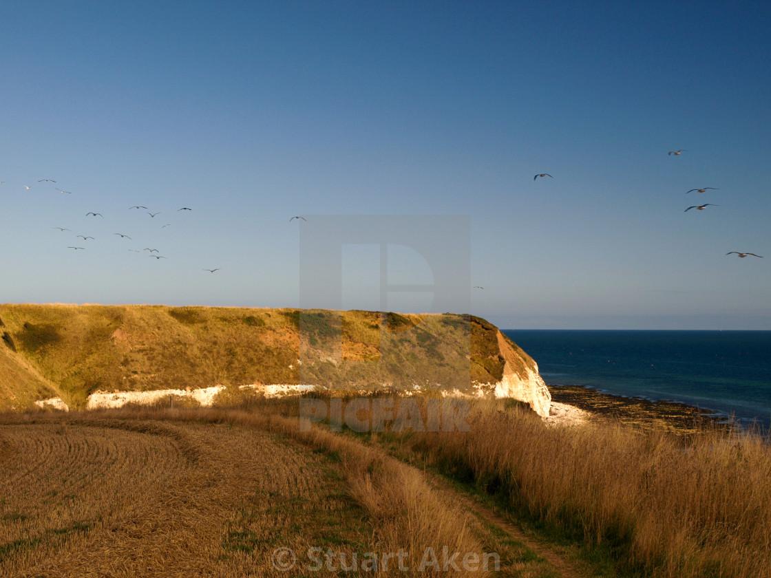 """""""Autumn Sun on Coastal Path"""" stock image"""