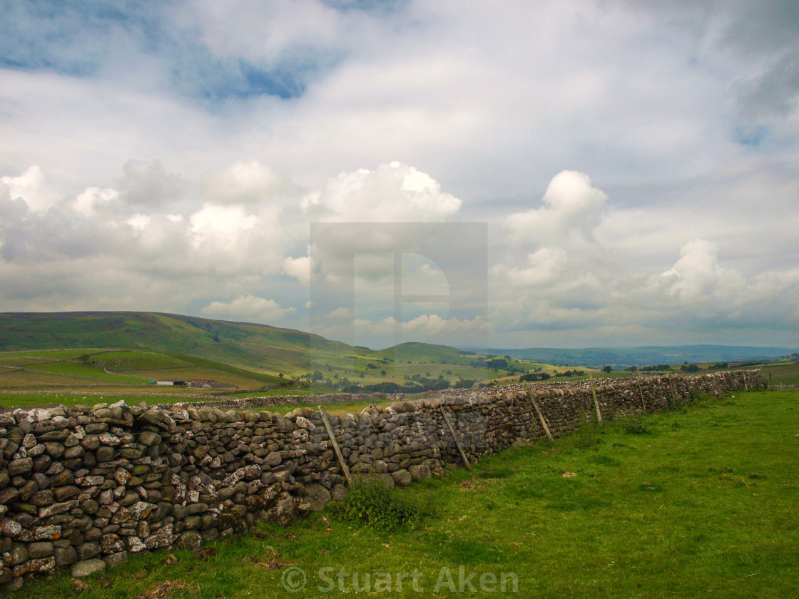 """""""Dales Drystone Wall"""" stock image"""
