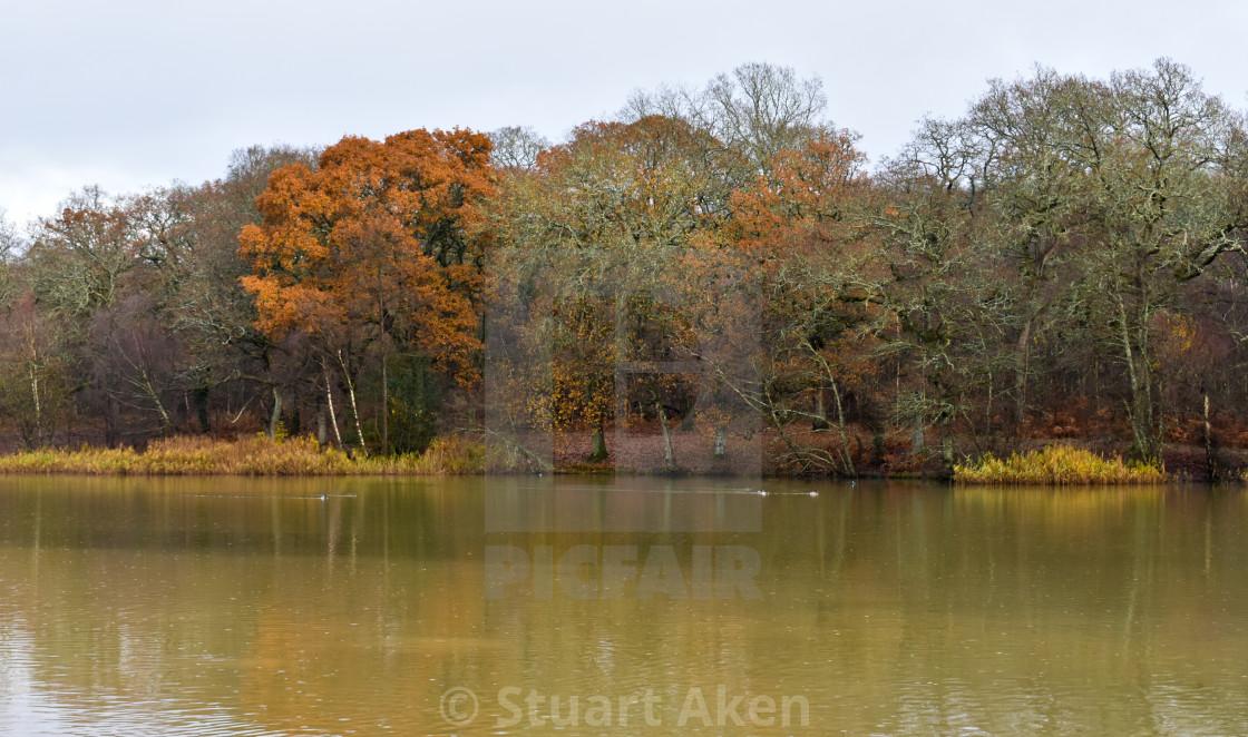 """Weather of Autumn"" stock image"