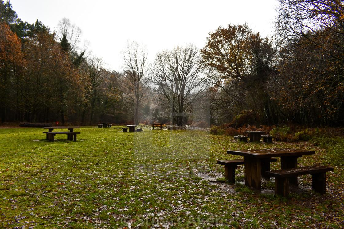 """Wet Autumn Picnic"" stock image"