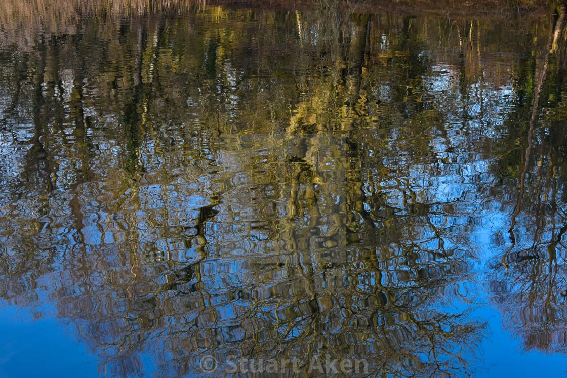 """Winter Reflection"" stock image"