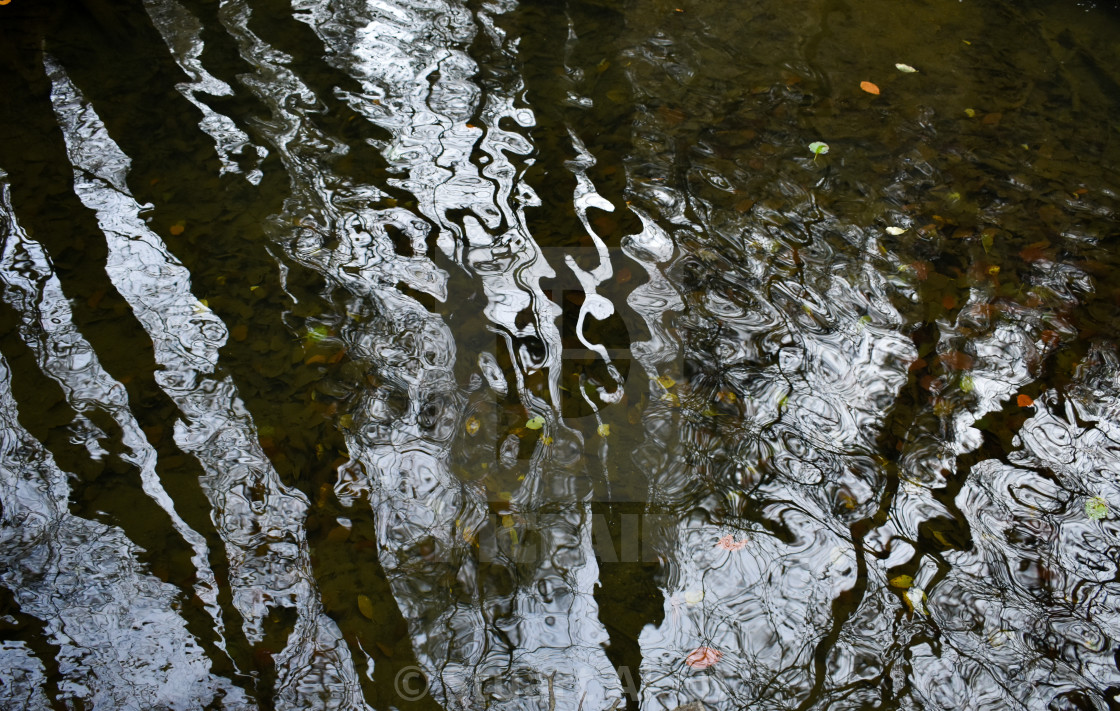 """Reflecting on Water #3"" stock image"