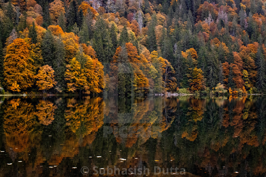 """Autumn Mirror"" stock image"