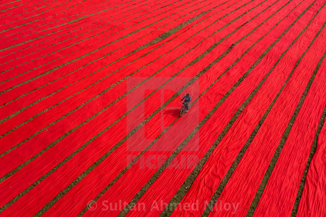 """""""Alone on the red field"""" stock image"""