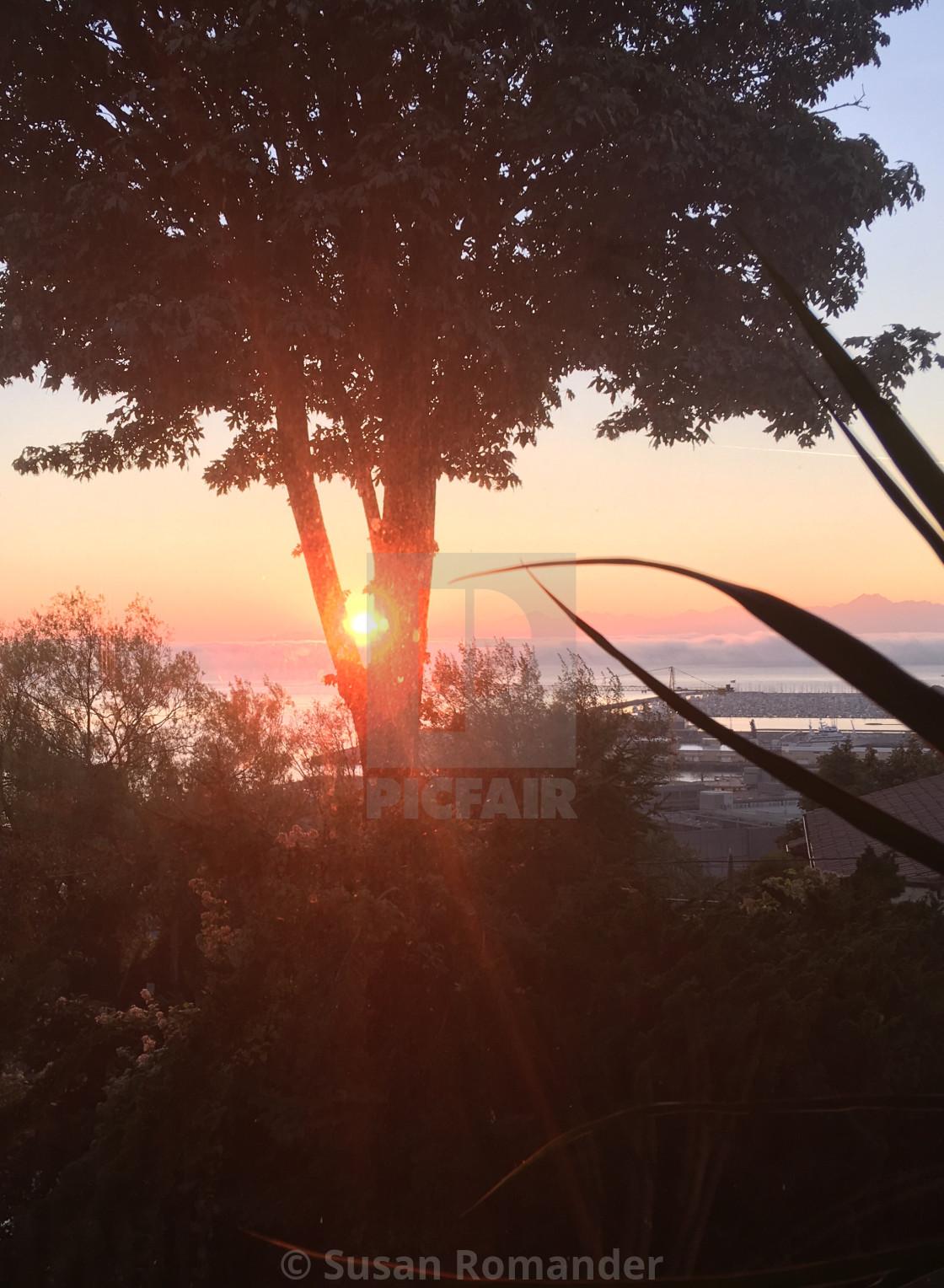 """""""PNW Sunset"""" stock image"""