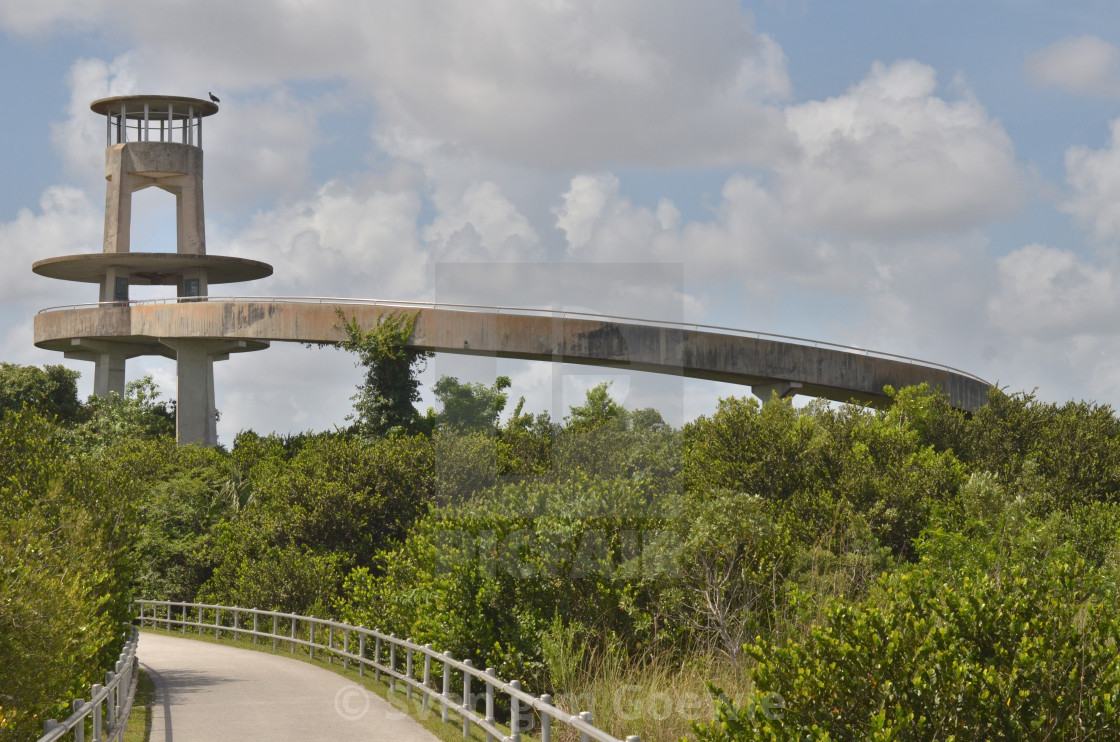 """""""ROADS COLLECTION by GOEWIE - Everglades National Park"""" stock image"""