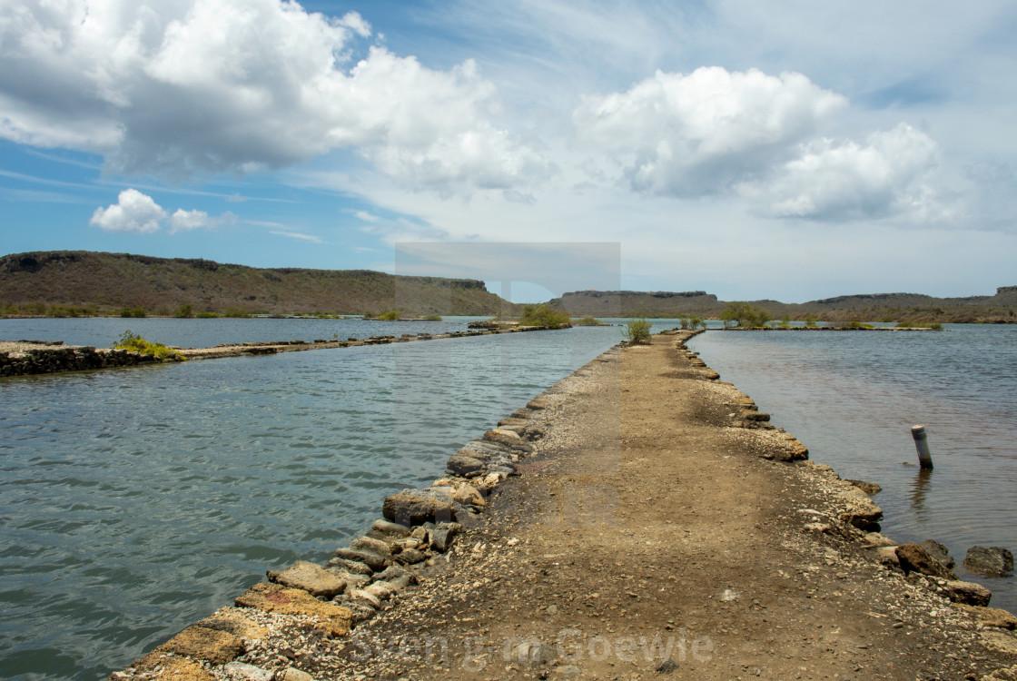 """""""Salt lake Willembrordus, Curaçao"""" stock image"""