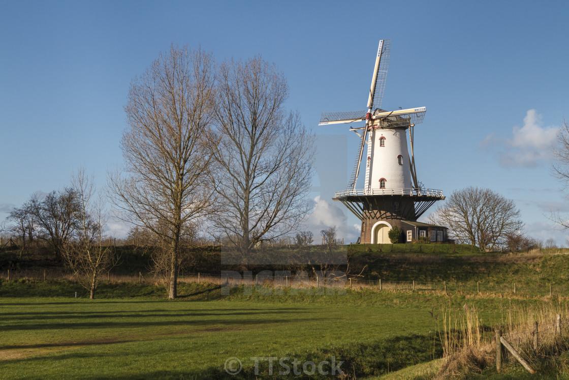 White windmill in Veere 2