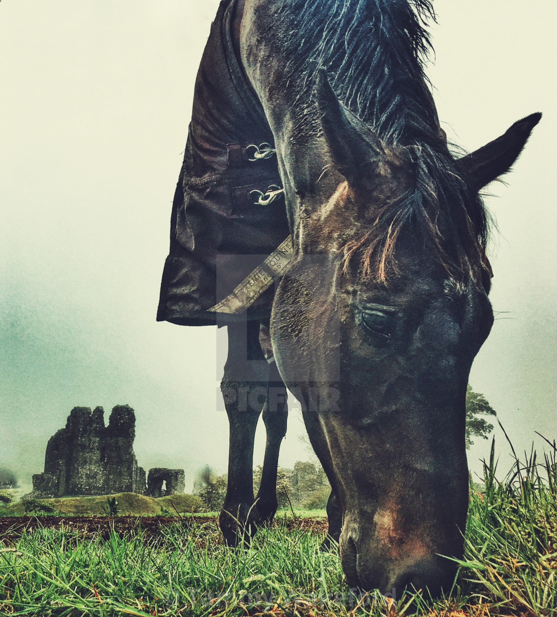 """""""Horse and Castle"""" stock image"""