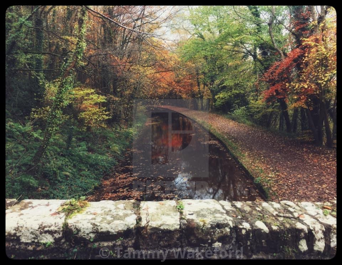 """""""Autumnal Canal"""" stock image"""