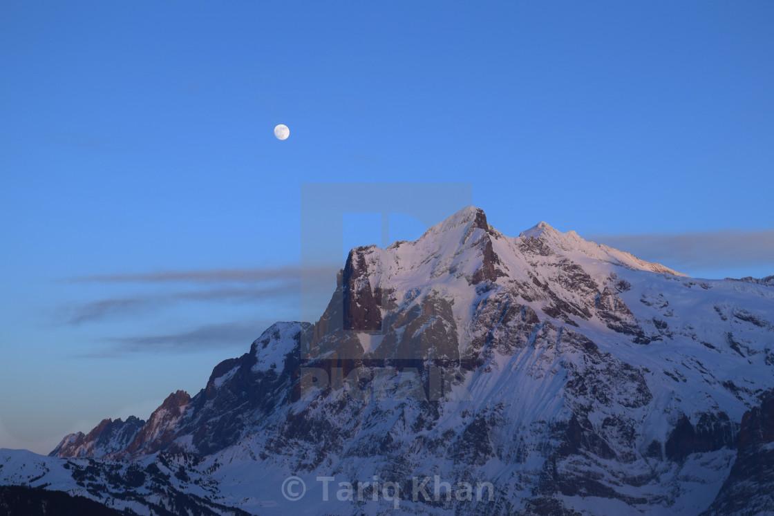 """""""Moonlight Mountain"""" stock image"""