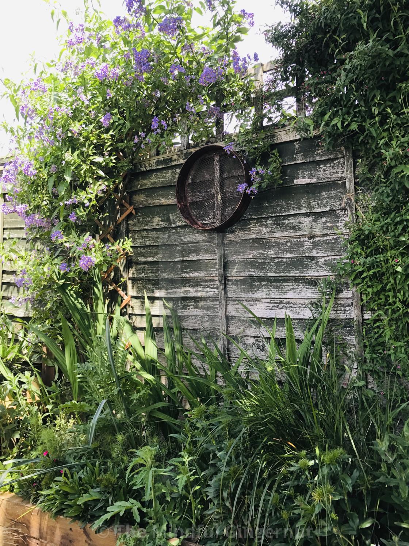 """""""Garden Joy"""" stock image"""