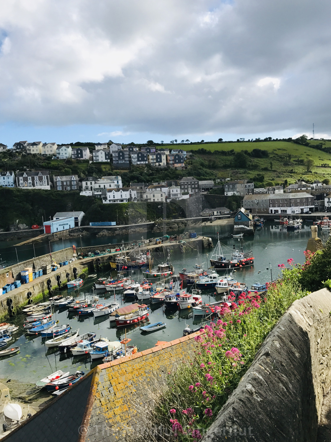 """""""Mevagissey Harbour"""" stock image"""