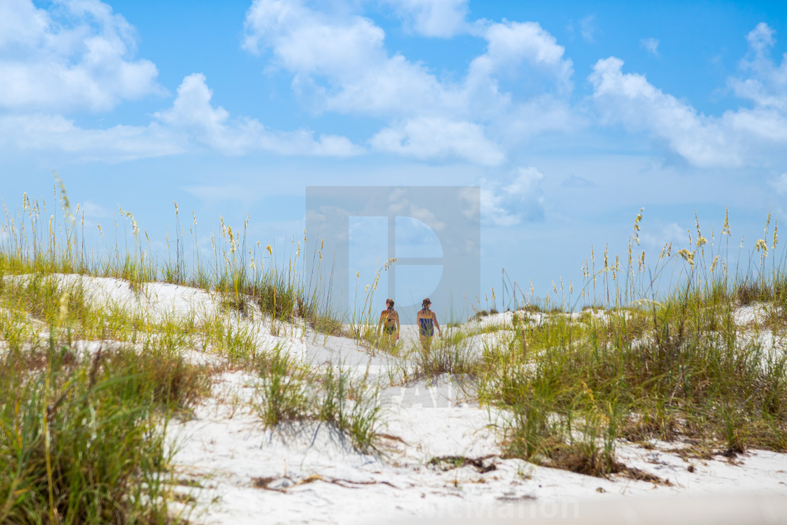 """Florida"" stock image"