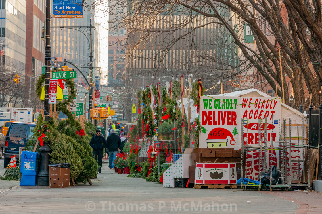 """""""Christmas Trees For Sale 