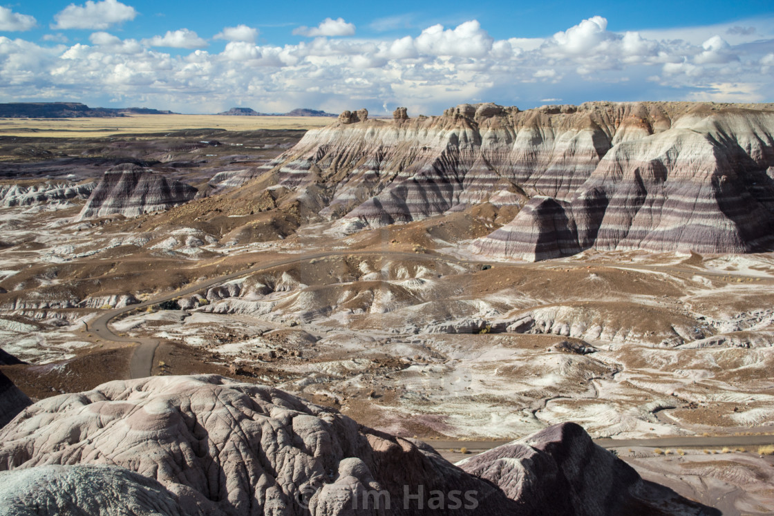 """Petrified Forest National Park"" stock image"