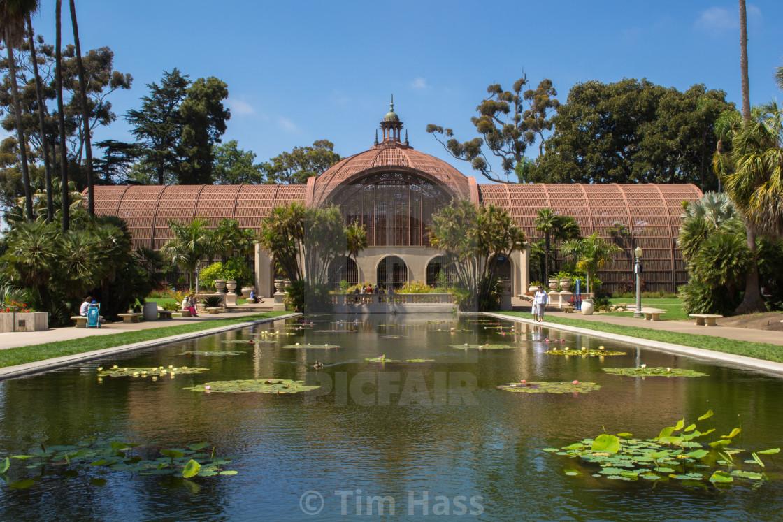 """""""Balboa Park Arboretum"""" stock image"""
