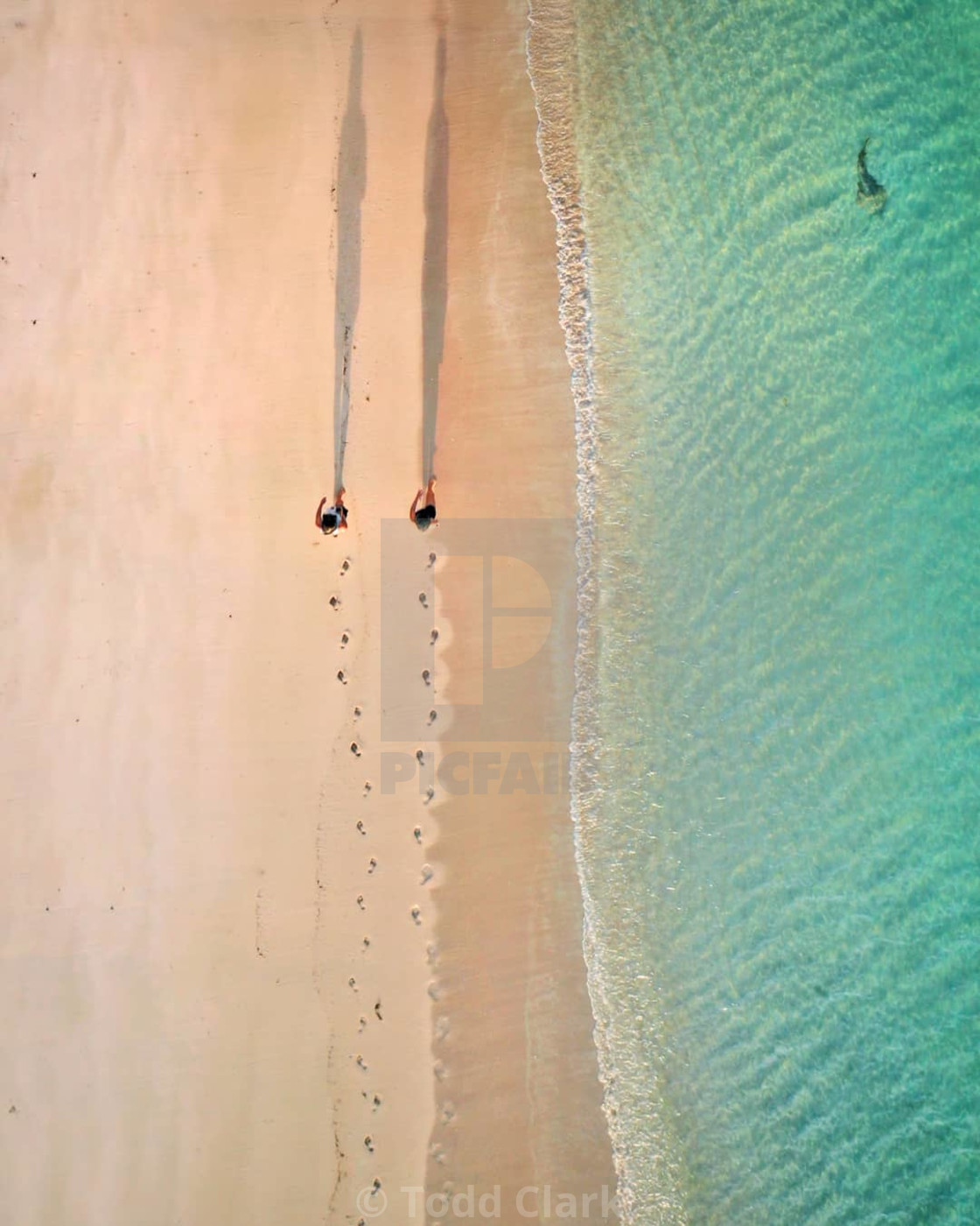 """Footsteps at Ningaloo"" stock image"