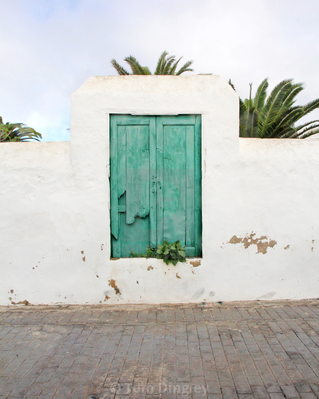 """""""Green & White of Costa Teguise"""" stock image"""