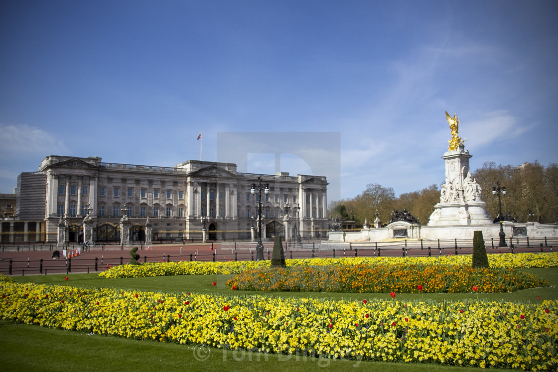 """Buckingham Palace in Spring"" stock image"