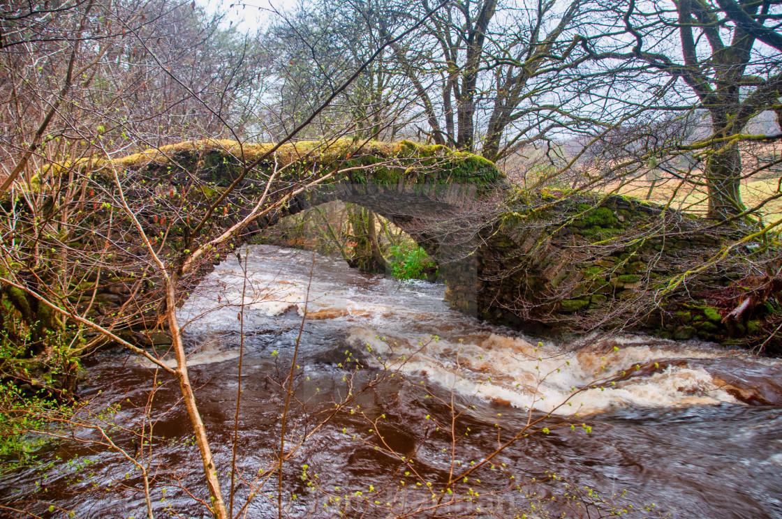 """Old Bridge Glenbranter"" stock image"
