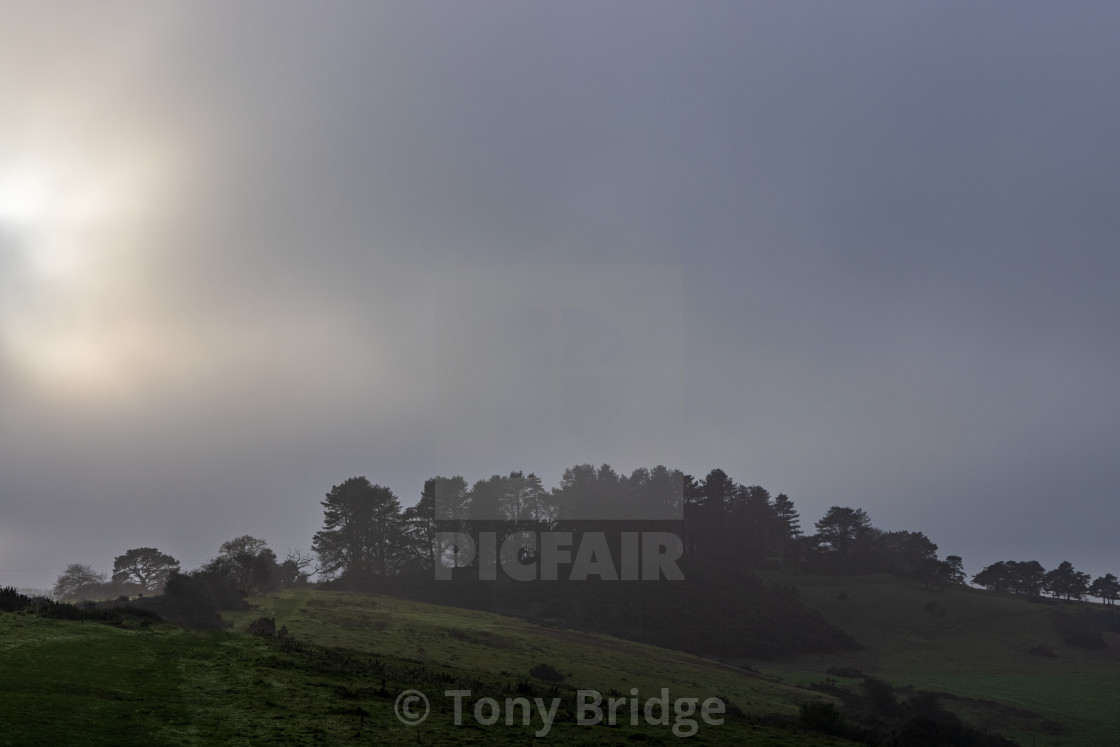 """Breaking through the fog over Penbury Knoll"" stock image"