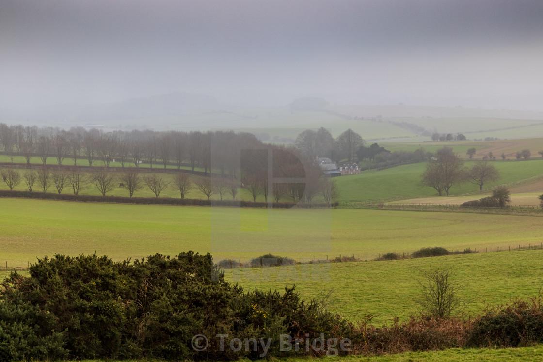 """West Blagdon Farm in the fog"" stock image"