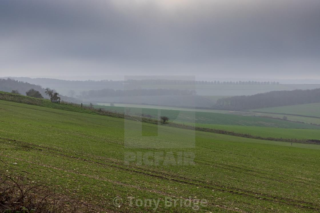 """""""Grey November evening, Cranborne Chase"""" stock image"""