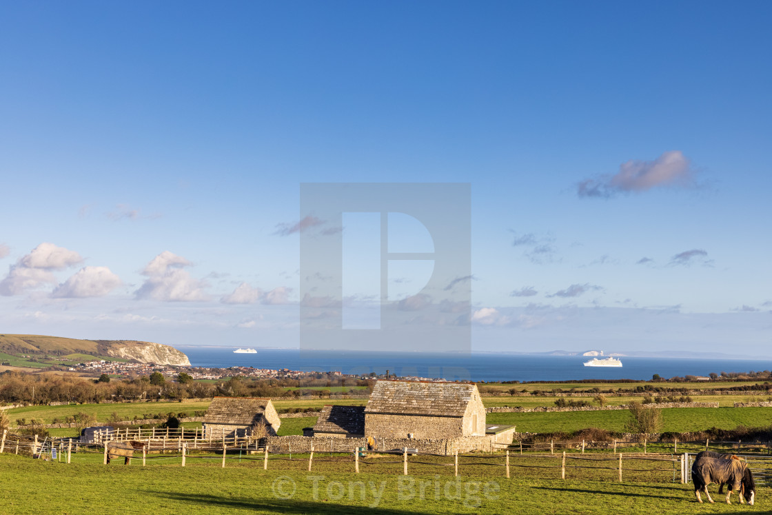 """""""Cruise ships in Swanage Bay"""" stock image"""