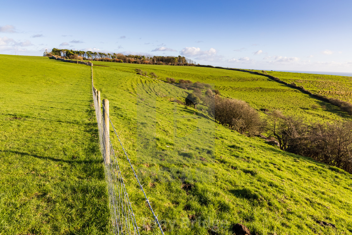 """""""Crossing the Purbeck countryside"""" stock image"""