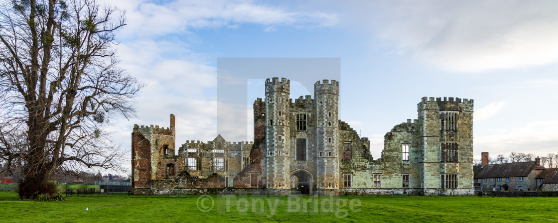 """Cowdray Castle ruins, Midhurst"" stock image"