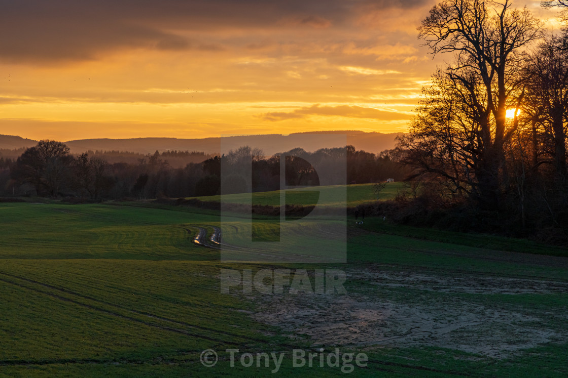 """""""Sunset and shadows over the Cowdray Estate near Midhurst"""" stock image"""