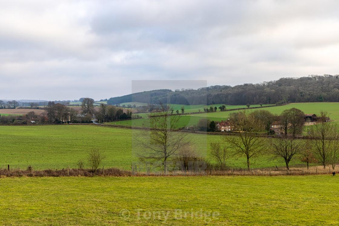 """Hambledon countryside"" stock image"