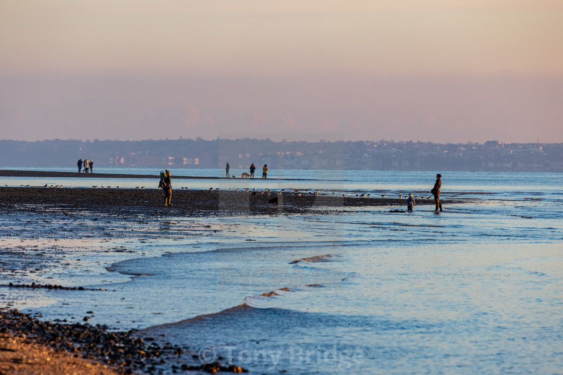 """""""WInter afternoon on Meon Beach"""" stock image"""